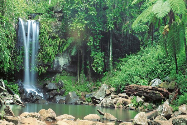 Cascada perdida en la naturaleza