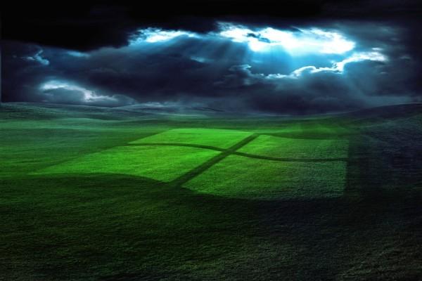 Logo de Windows en la hierba