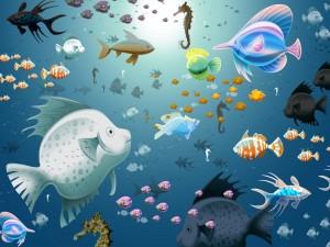 Pescaditos de colores