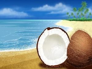 Coco en una playa virtual