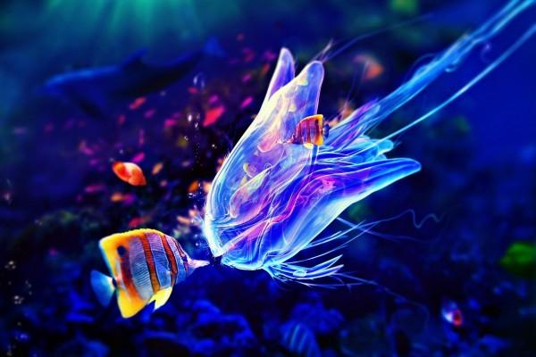 Medusa y peces