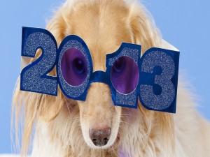 Celebrando el año 2013