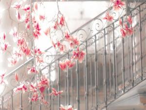 Magnolias en la escalera