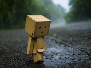 Danbo, triste y solo
