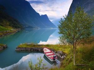 Bote amarrado en la orilla del lago