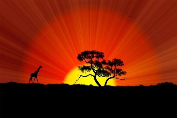 África