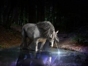 Postal: El unicornio
