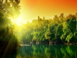 El sol sobre un río de aguas verdes