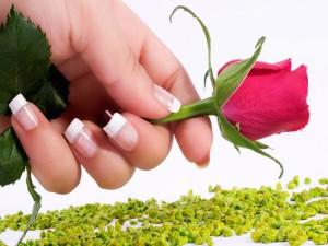 Postal: Con una rosa roja en la mano