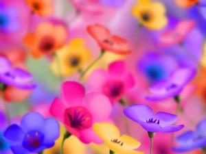 Bonitas flores de colores