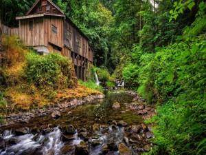 Cabaña junto al río