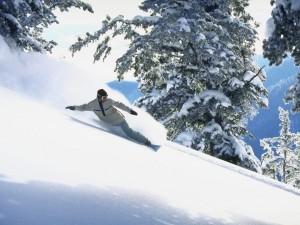 Descenso en snowboard
