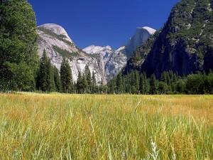 Parque Nacional Yosemite, EE.UU.