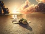 """""""Las Aventuras de Sammy""""... llegando a la playa"""