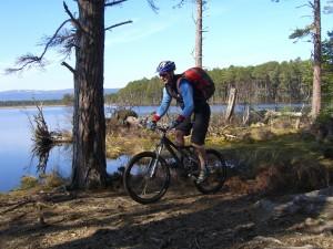 Postal: Ruta en bici
