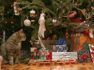 Postal: La Navidad de un gato