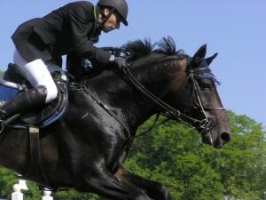 Postal: Jinete en su caballo