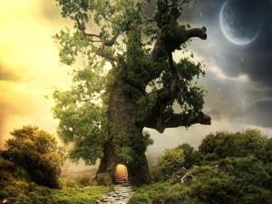 Postal: Un árbol con vida interior