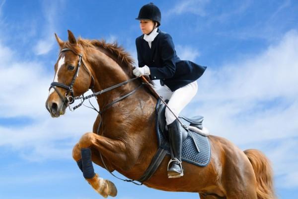 Jinete en su caballo