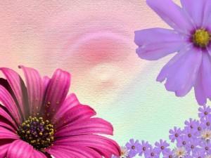 Postal: Tapiz de flores