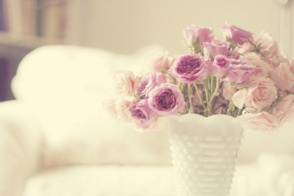 Delicadas flores