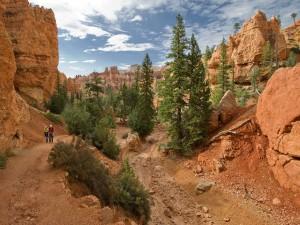 Postal: Navajo Trail, Parque Nacional del Cañón Bryce, en Utah (EE.UU.)