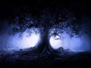 Postal: Árbol en la oscuridad