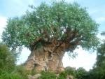 Árbol con animales tallados en el tronco