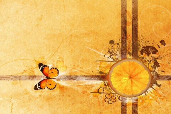 Naranja y mariposa