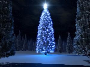 Postal: Arbol de Navidad azul