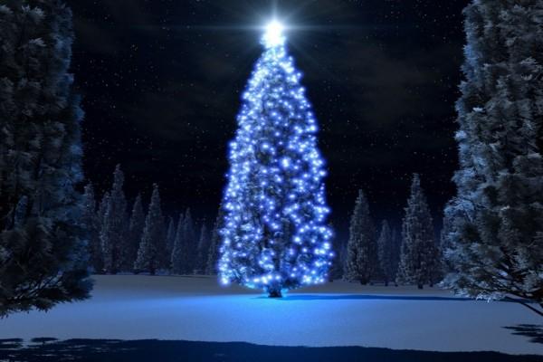 Arbol de Navidad azul