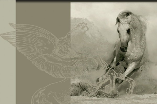Arte equino