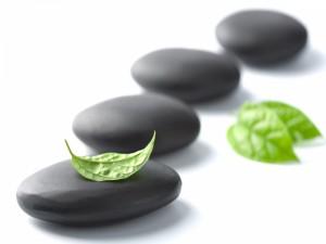 Hoja de menta sobre una piedra
