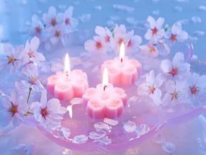 Flores y velas