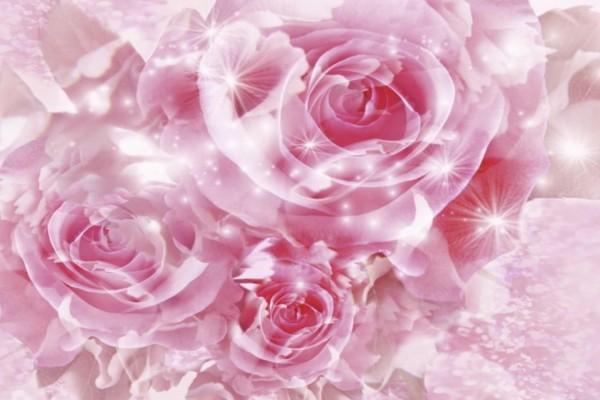 Rosas y destellos de luz