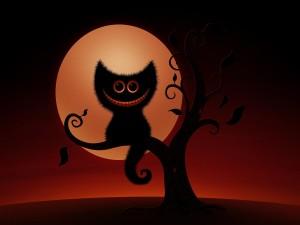 Gato sonriendo sobre un arbol de noche