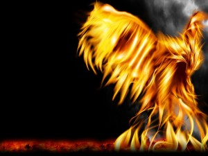 Postal: Renacido del fuego