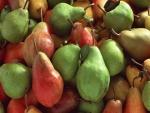 Peras rojas y verdes