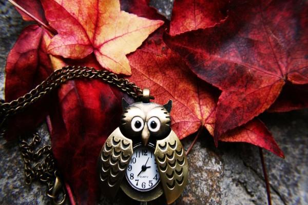 Reloj con forma de búho y cadena