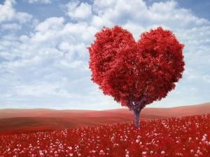 Postal: Corazón en un árbol rojo