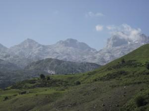 Praderas verdes en los Picos de Europa (España)