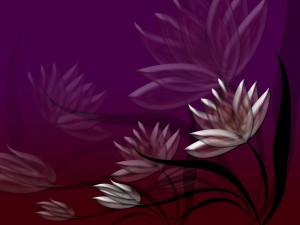 Postal: Flores púrpura