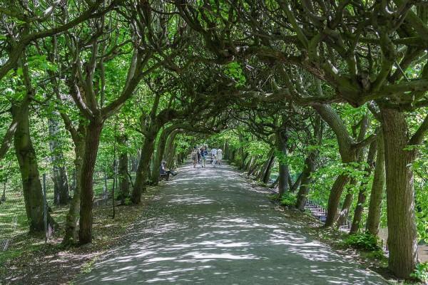 Parque Adam Mickiewicz, Oliwa, Gdansk, Polonia