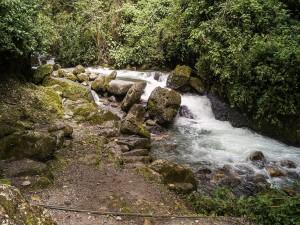 Afluente en el Parque Nacional Guaramacal