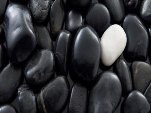 Piedra blanca entre muchas negras