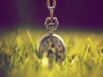 Reloj en la hierba