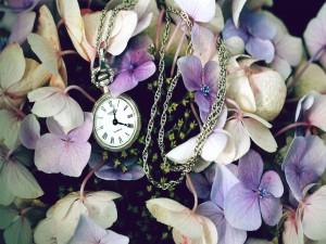 Postal: Reloj entre flores