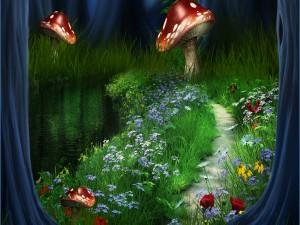 Flores y hongos en el camino