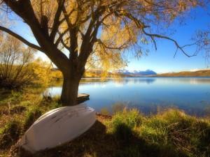 Postal: Barca en el lago
