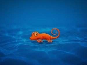 Postal: Gecko